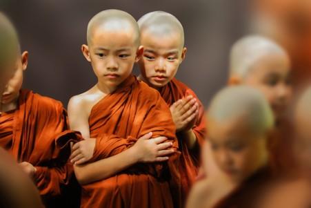 可爱小僧侣图片