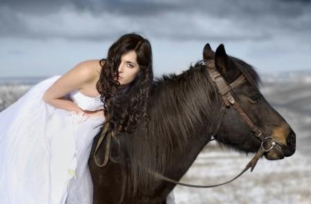 一匹马在雪中的新娘5K高端电脑桌面壁纸