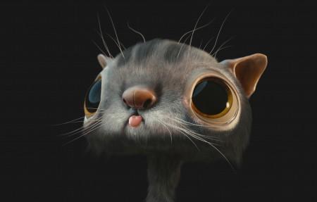 一只可爱的猫图片背景素材