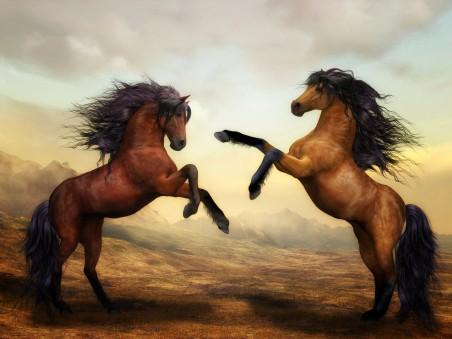 马,野马,艺术,马4K高端电脑桌面壁纸