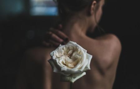 女人背部 裸背 玫瑰花 4K高端电脑桌面壁纸
