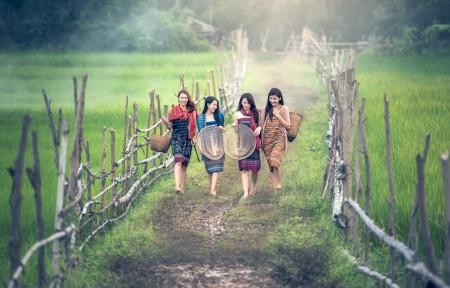 女孩 农村 路径 农业 美丽 美女5K图片