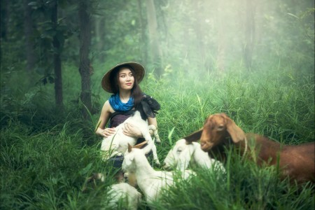 森林 树林 抱着羊羔的女人 5K美女图片