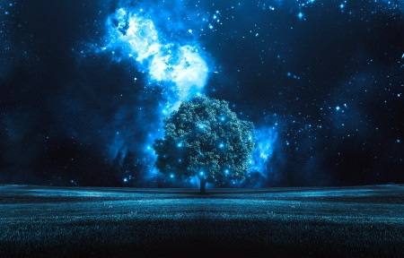 树 星夜 3440x1440风景高端电脑桌面壁纸