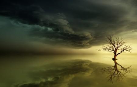 天空 海 日落 树 魔法 黎明 唯美意境4k风景高端电脑桌面壁纸