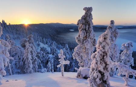 芬兰冬天雪景3440x1440桌面高端电脑桌面壁纸