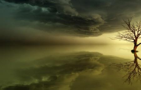 天空 海 日落 树 魔法 黎明 3440x1440风景超高清壁纸精选