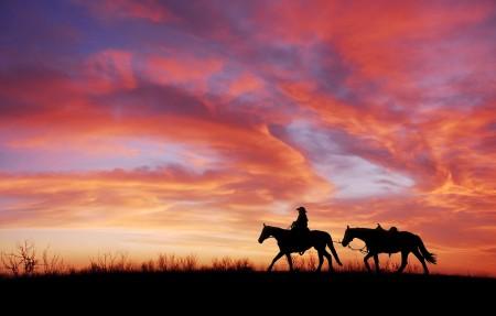 黄昏 夕阳 骑马的女孩4k风景高端电脑桌面壁纸