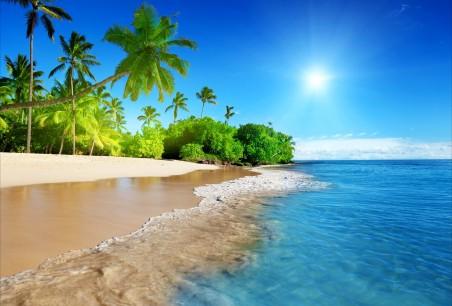蔚蓝的大海,阳光,棕榈树,沙滩,海岸,海洋,天空,5K风景高端电脑桌面壁纸