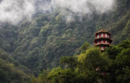 森林,山雾,塔,台湾风景4k高端电脑桌面壁纸