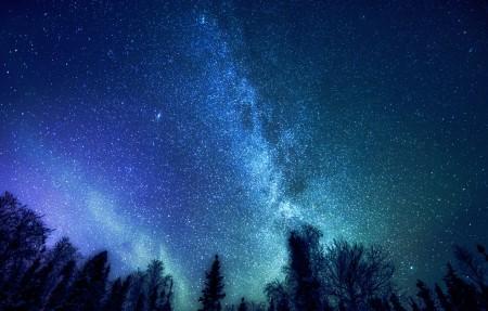 森林 树 神秘 银河系 星星 4K星空风景高端电脑桌面壁纸