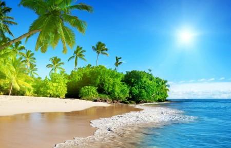 夏天,海洋,太阳,天空,棕榈,海岸,海滩,大自然风景3440x1440高端电脑桌面壁纸