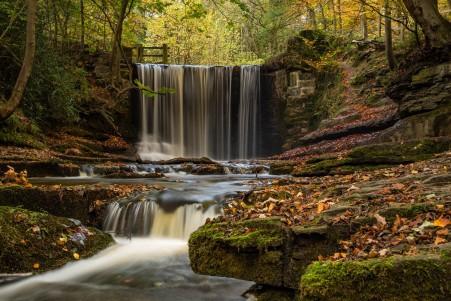 英格兰,威尔士,秋天,森林,叶子,瀑布风景5K高端电脑桌面壁纸