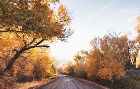 美国科罗拉多州秋天风景3440x1440高端电脑桌面壁纸