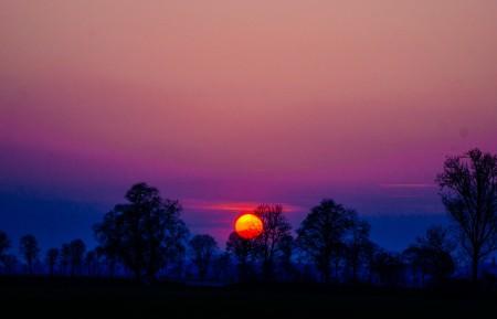 天空 日落 树 剪影 6K风景高端电脑桌面壁纸