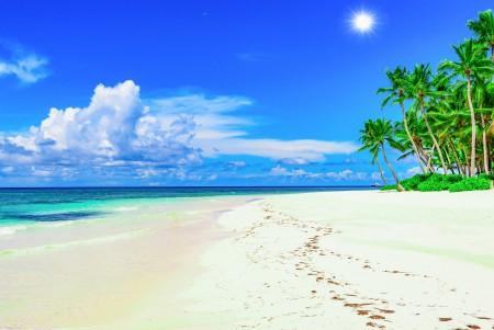 海岸 海滩 太阳 棕榈树 夏天 热带天堂 棕榈树 6K风景高端电脑桌面壁纸 6930x4625