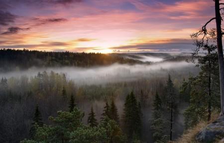 日出 早晨 雾 芬兰国家公园3840x2160高端电脑桌面壁纸