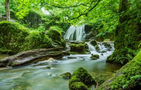 自然 森林 瀑布 绿色树林 4K风景高端电脑桌面壁纸