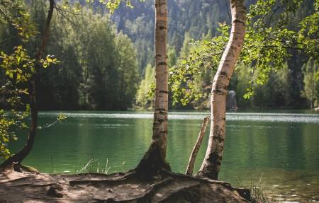 捷克共和国 湖畔 自然风景4K高端电脑桌面壁纸