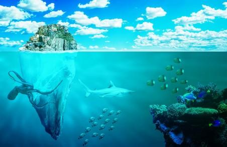 海 鱼 八达通 岛 沿海小镇 珊瑚 鱼 5K风景高端电脑桌面壁纸