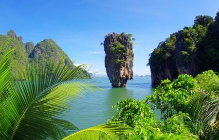热带 海 棕榈树 灌木 树木 岩石 4K风景超高清壁纸精选
