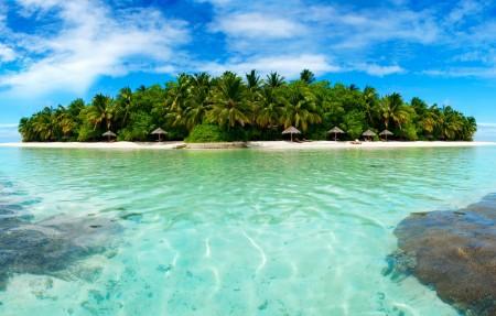小岛,棕榈树,岛上的树木,大海,沙滩,4K风景高端电脑桌面壁纸3840x2160