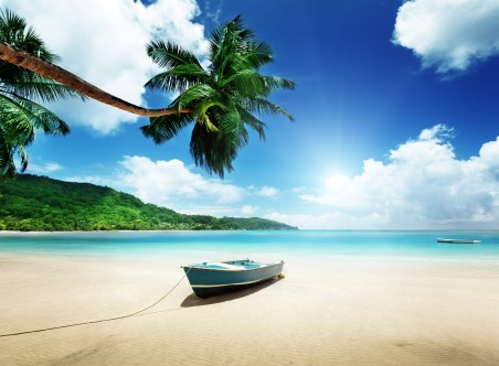 阳光 热带 夏天 棕榈树 沙滩 大海 沙滩 大海 海岸 岛屿 5K风景高端电脑桌面壁纸