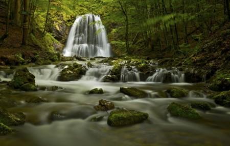 自然森林 水 岩石 瀑布4K风景高端电脑桌面壁纸