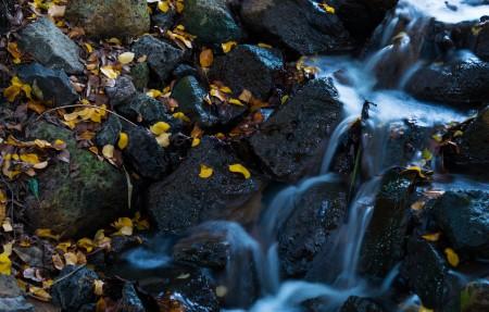 瀑布 叶子 水 自然 天然水 石头 溪流 4K风景高端电脑桌面壁纸