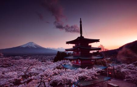 富士山,塔,樱花日本4K风景图片