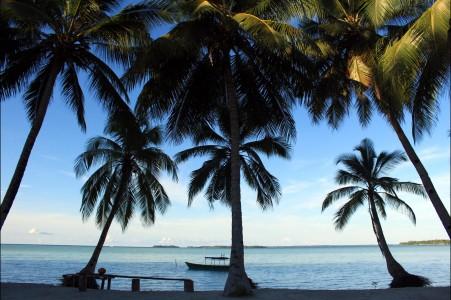 海滩 椰子树 水 免费图片 自然旅游 海 椰子 视图 树 云 海边风景4K高端电脑桌面壁纸