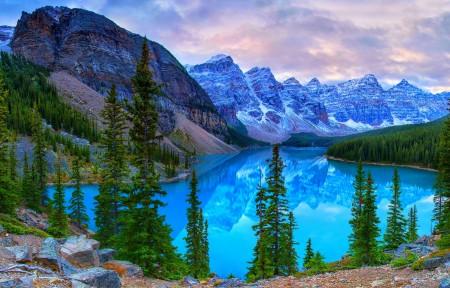 森林 树木 山 湖 石头 加拿大 班夫国家公园 4K风景高端电脑桌面壁纸