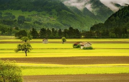 瑞士 草地 山 绿色 棚屋 耕地 树 5K风景高端电脑桌面壁纸
