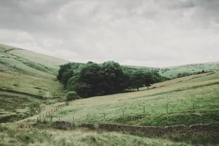 牧场 原野 农村 农业 绿色草甸 4K乡村风景高端电脑桌面壁纸