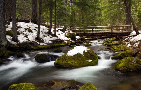 森林 小溪 雪景 4K风景高端电脑桌面壁纸