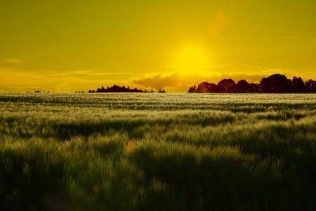 日落风景6K高端电脑桌面壁纸
