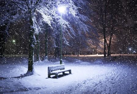 公园 晚上 雪 灯 冬季 树木 5K风景高端电脑桌面壁纸