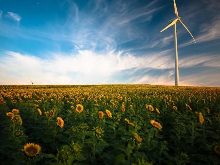 农业 美丽 云 农场 农田 原野 向日葵 风力发电 4K高端电脑桌面壁纸