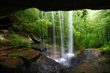 瀑布,洞穴,树林,自然风景4K高端电脑桌面壁纸