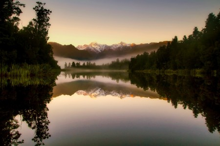 新西兰 日出 雾 上午 森林 树 自然风景图片