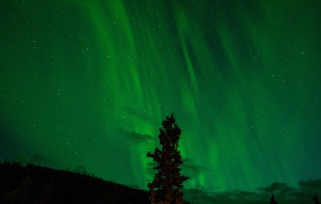 北极光 绿色 极光 星空 6K风景高端电脑桌面壁纸