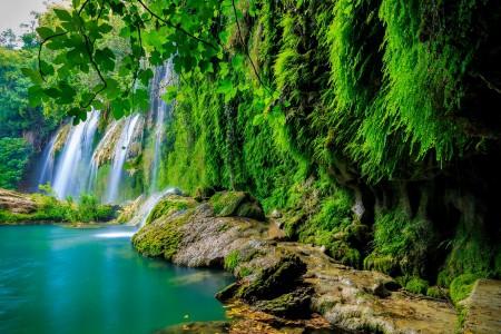 森林 瀑布 岩石 绿色苔藓 岩石 树枝 树叶 5K风景图片