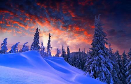自然 冬天 山 雪 树林 天空 4K风景高端电脑桌面壁纸