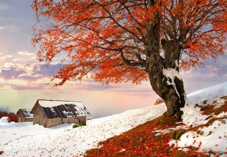 自然别墅 冬季 雪 天空 4K风景图片