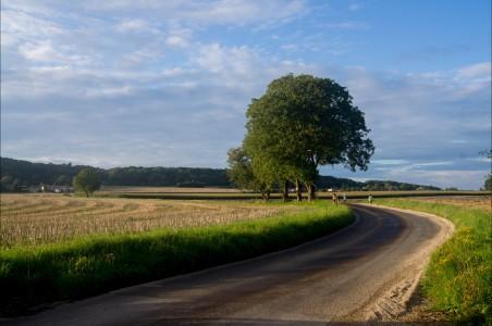 法国乡村公路4K风景图片