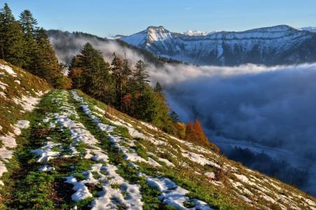山坡 雪 树木 山 薄雾 4K风景摄影图片