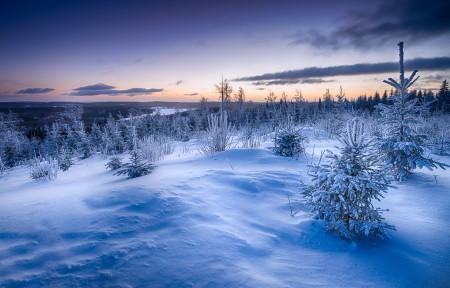 冬天的雪风景4k高清高端电脑桌面壁纸