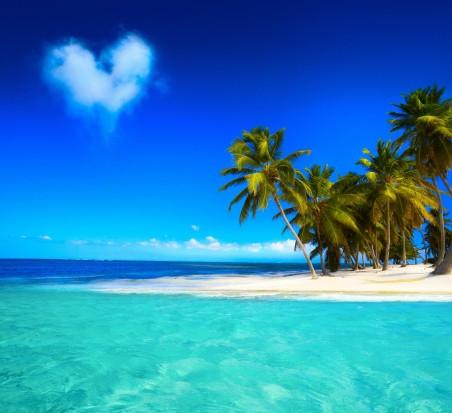 蓝天大海,沙滩,海岸,蓝色,翡翠,海洋,棕榈树,6K风景高端电脑桌面壁纸