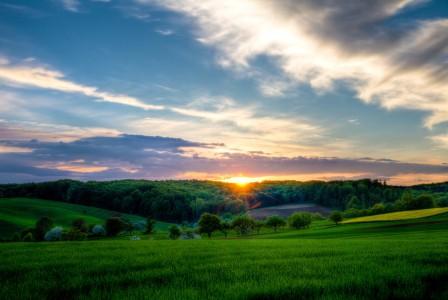天空 树林 草地 夕阳 5k风景图片
