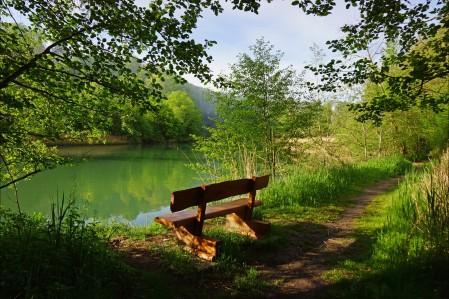 草丛 人行道 叶子 森林 树木 长凳 湖 瑞士风景4K高端电脑桌面壁纸